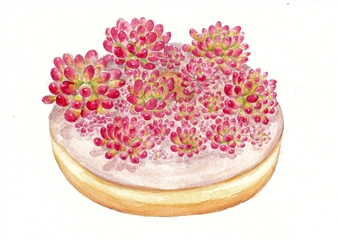 Succulent Donut 4
