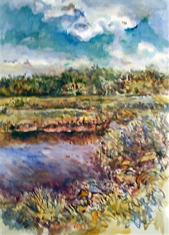 Newman Rd Newburyport Marsh, August
