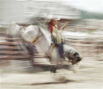 "Rodeo - 4 Photograph on Plexiglass 42"" x 49"""