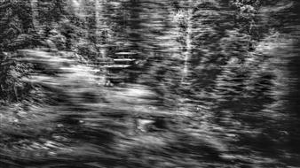 "Fleeting Landscape IV Photograph on Fine Art Paper 20"" x 36"""