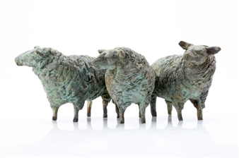 """Sheep from Texel Bronze 4"""" x 12"""" x 8"""""""