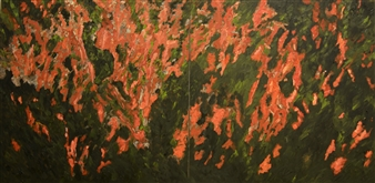 Orchid Garden