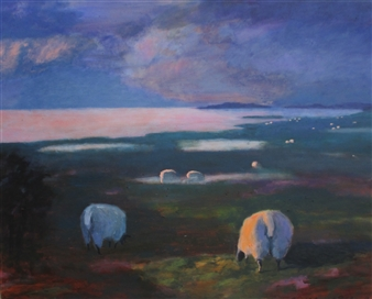 Marsh Sheep, Fanoe