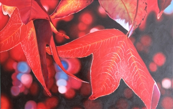 Maples
