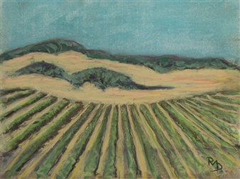 Sonoma 2