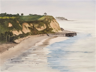 DelMar Low Tide
