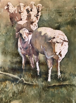 Seven Sheep
