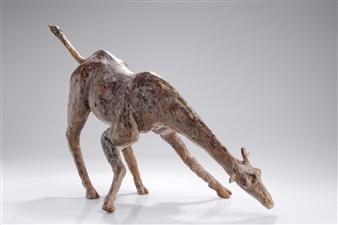 """Drinking Giraf Bronze 16"""" x 16"""" x 16"""""""