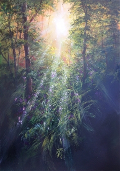 Morning Sunlight