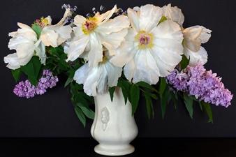 """Spent Bouquet Archival Pigment Print 30"""" x 40"""""""