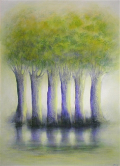 Trees on Canal du Midi