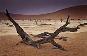 "Sossusvlei - Robert Mackway-Jones - Australia Photograph 0"" x 0"""