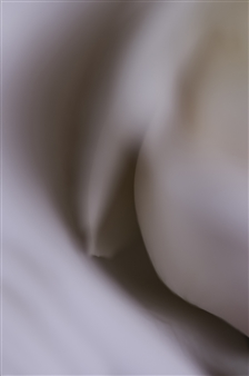 Spooning