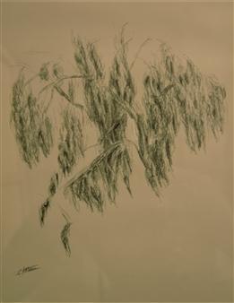 """Sketch for Tropical 4 Polychrome Pencil 14"""" x 12"""""""