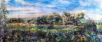 Cross Street Cornfield