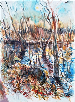 Ipswich River Melt