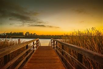 "Golden Sunrise - Jodi Webber - United States Photograph 0"" x 0"""