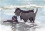 Dog Thief on the Beach