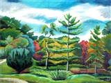 Tupelo Pines Tree Garden_ Innisfree Autumn Lscp