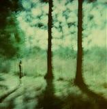 Negative Film 21