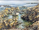 Bass Rocks, East Gloucester