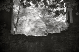 06_Out of the Stone Wall