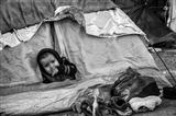 The Migrant Caravan - El Ninio Solo