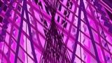 Purple Pause